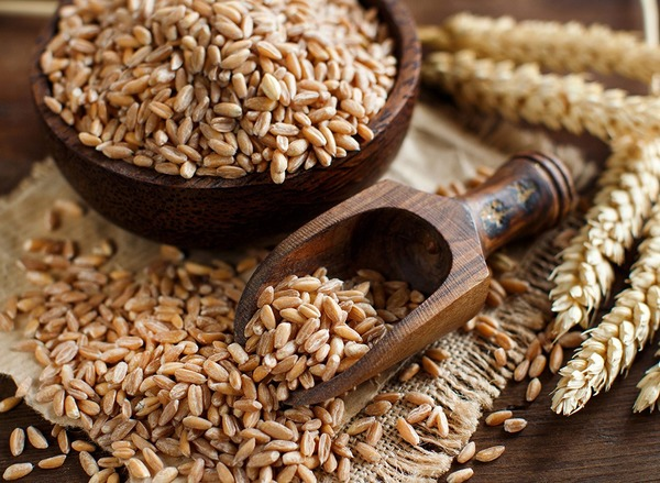 Брага из пшеницы, как она делается, рецепты