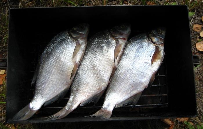 Загрузка рыбы в коптильню