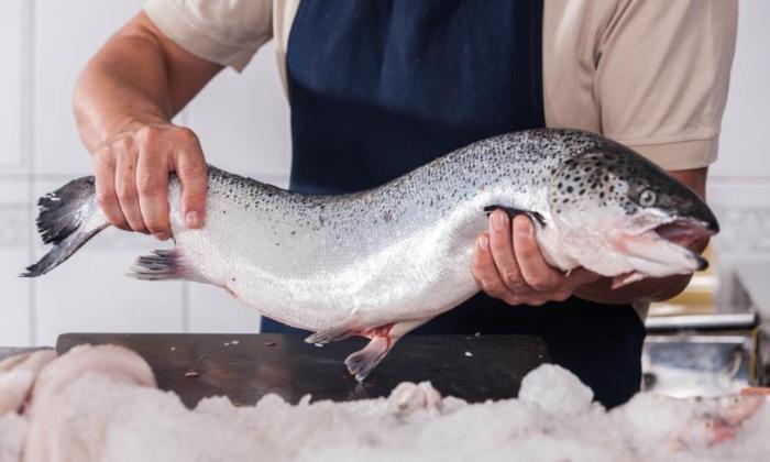 Рыба из магазина