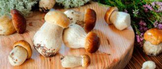 Копчение грибов