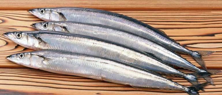 Смешная рыбеха