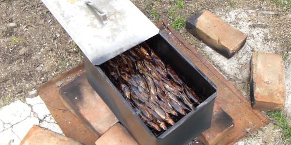 Горячее копчение мелкой рыбы