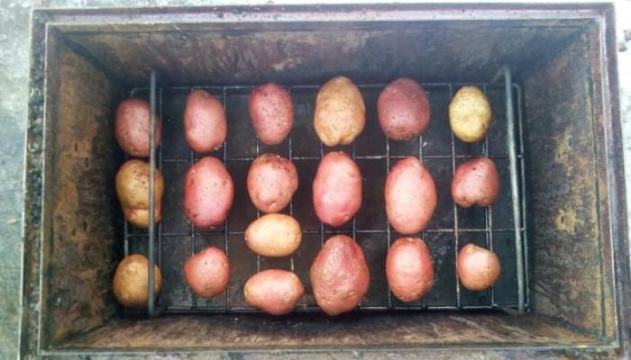 Овощ на решетке