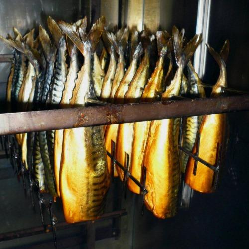 Рыбка в агрегате