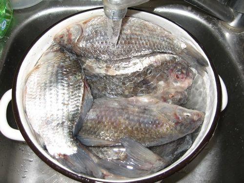 Промывка рыбы