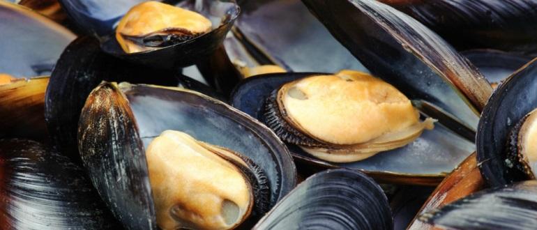 Настоящий морепродукт